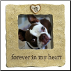 Forever in My Heart Frame