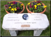A Color Photographic Memorial Garden Bench