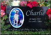 Engraved Color Photographic Granite Pet Headstone & Memorial