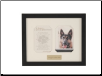 Loved Companion Memorial Frame