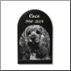 Granite Memorial Photographic Pet Urn