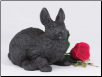 Black Rabbit Figurine Garden Urn