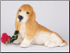 Basset Hound Dog Figurine Garden Pet  Urn