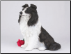 Border Collie Dog Figurine Garden Pet Urn