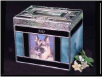 Stained Glass Beveled Top Photo Pet Urn