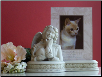 Memorial Frame with Angel & Cats