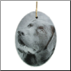 Glass Photo Ornament - Laser Etched