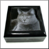 Piano-Finish Photo-Top Keepsake Box