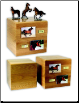 Horse Cremation Urn w/ Figurine & Photo Holders
