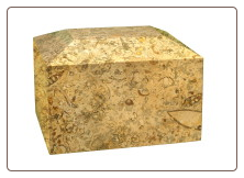 Rectangular Fossil Marble Urn