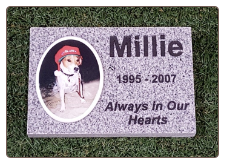 Gray Granite Rectangle Memorial With Color Tile